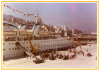 37. La Terminal de Transbordadores del Muelle de Trasatlánticos